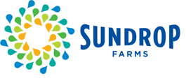 Sundrop_Farms_02