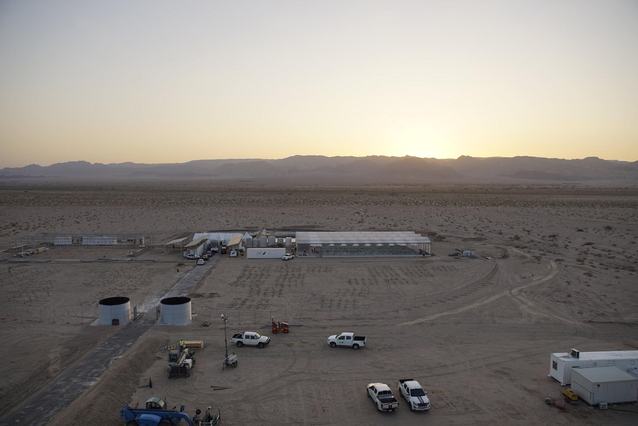 SFP in Jordan